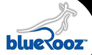 BlueRooz_Logo-1000