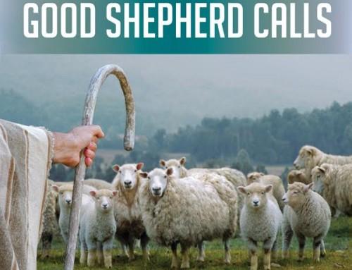Good Shepherd Calls